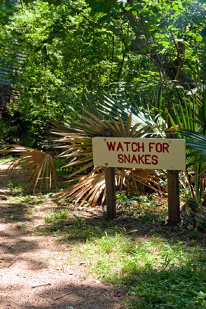 "mile-long Palmetto Trail at Palmetto State Park warns visitors to ""watch"
