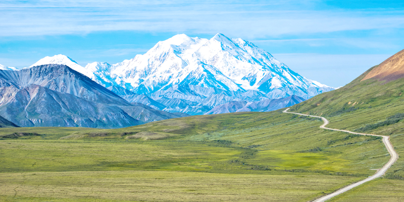 Denali National Park - Photo by Rick Quinn