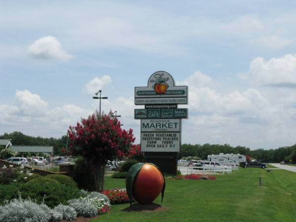 Enjoy Georgia peaches at Lane Southern Orchards  in Fort Valley