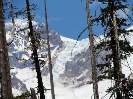Mt. Rainer - Tahoma Glacier