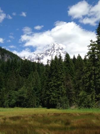 Mt. Rainer - from Longmire