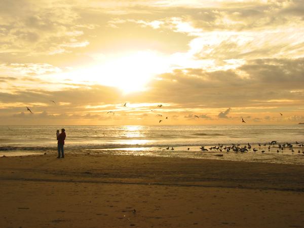 Seacliff Beach,