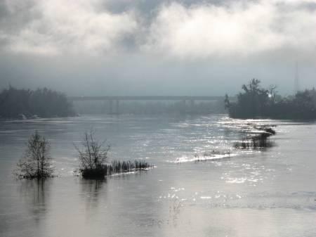 Sacramento River on a January Morning