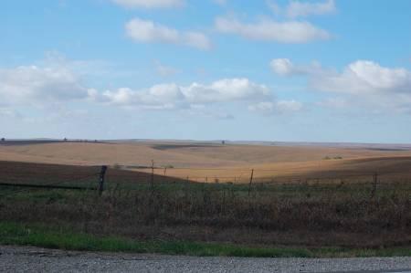 Back road in Kansas