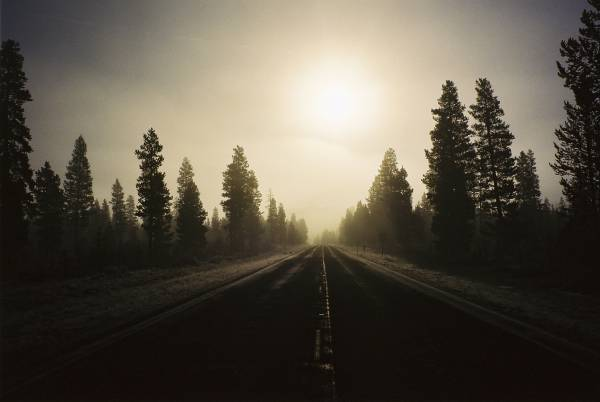 Foggy Morning, Oregon