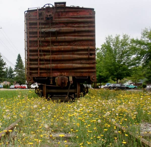 Springtime at the NW Railroad Museum