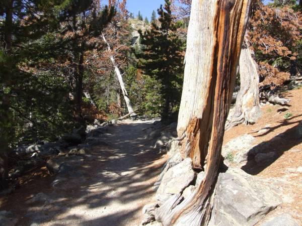 Bear lake trail.