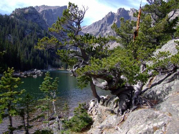 Dream lake.