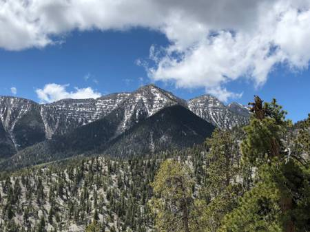 Snow-capped Mt. Charleston