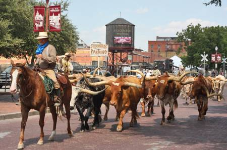 The Great American RoadTrip Forum - Fort Worth Stockyards - Fort Worth ...
