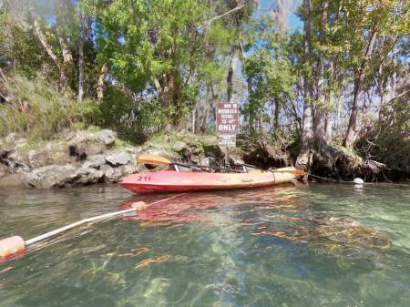 Crystal River Kayak