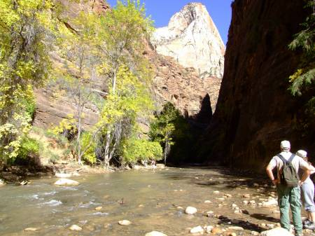 Virgin river to the Narrows, Zion NP