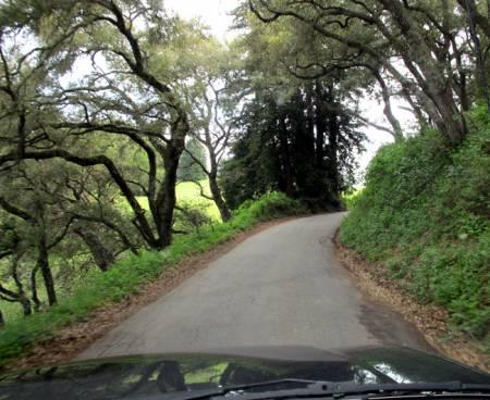 Mt_Madonna_Road