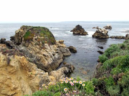 Point_Lobos1