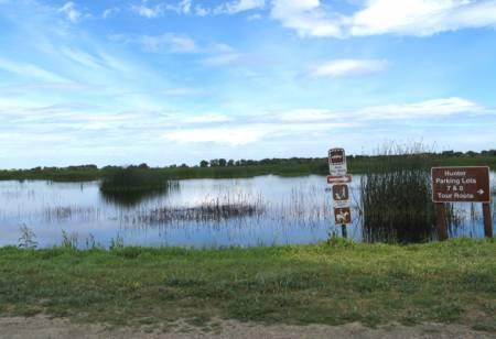 San_Luis_Wildlife_Refuge_Auto_Trail