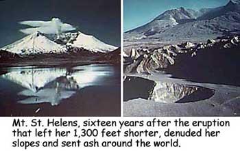 Roadtrip America 174 Mount St Helens