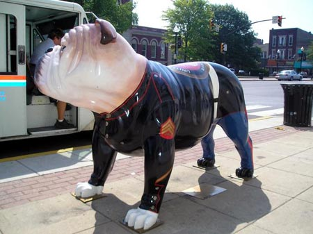 Marine Bulldog in Crown point, Indiana