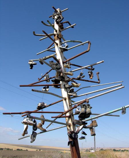 Athena Shoe Tree